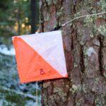 Orientering i skogen
