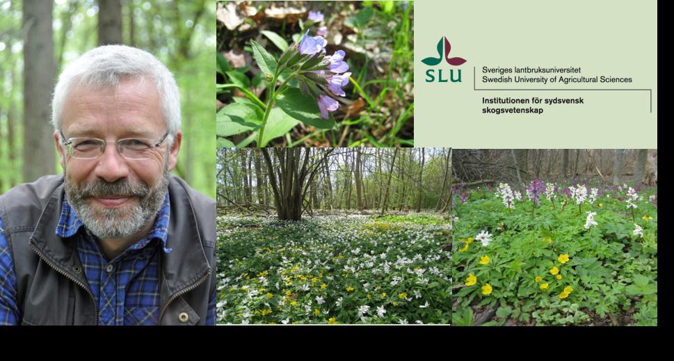 Jörg Brunet och floran i ädellövsskogen