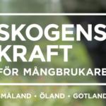 Logotyp Skogens Kraft