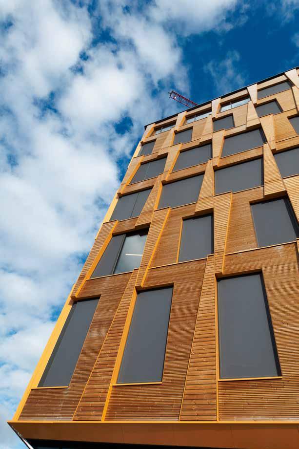 Träbyggnad Foto Trästad