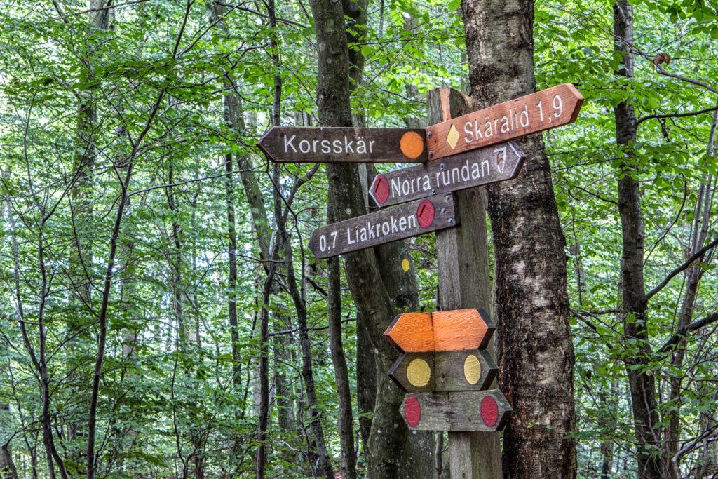 Vägvisare i skogen. Söderåsens nationalpark. Foto: Most Photos