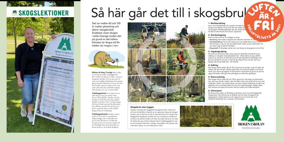Skogen i skolan_kollage Foto på Anna Steinwall - Lars Klingström