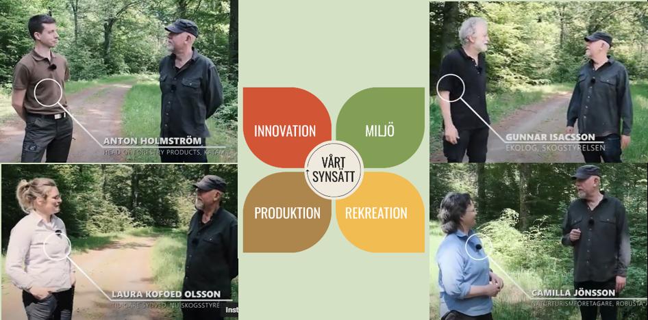 Kollage fyra filmer om skånska skogens potential